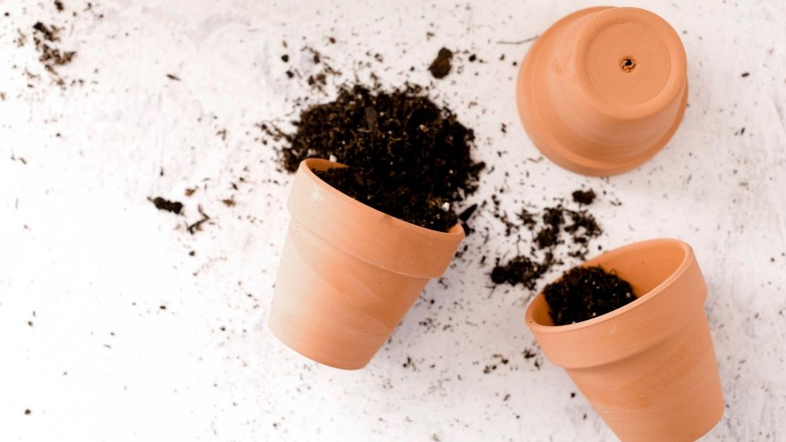 pots and soil spilling out