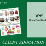 Why Does Fluid Matter?